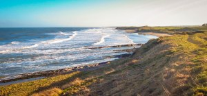 Some bonus photographs, but sadly, poor quality. Here, the enchanting Northumberland coast. January 30, 2015