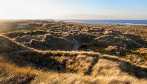 The dunes which stand over the West of Holkham Beach. February 17, 2015