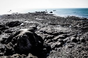 The rocks that jut out from Lizard Point. After so much walking, it's quite a good feeling to know that it's just not possible to walk any further, and that the only thing to do is to turn around. March 21, 2015